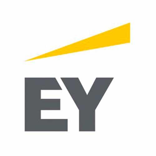 logo everisY